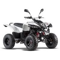 Adly 50 RS Liquide 2WD, les pneus disponibles