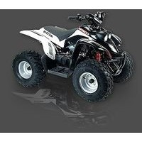 Aeon Cobra 100 S 2WD, les pneus disponibles
