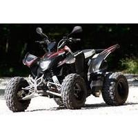Aeon Cobra 350 2WD, les pneus disponibles