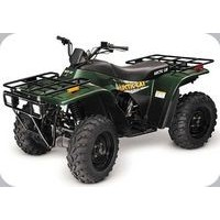 Artic Cat 250 2WD/4WD 2001, les pneus disponibles