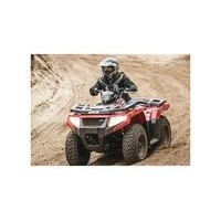 Artic Cat 450 i 4WD, les pneus disponibles