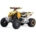 Can-Am DS 450, les pneus disponibles