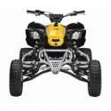 Can-Am 450 DS X MX 2013-2014, les pneus disponibles