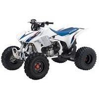 Honda TRX 450 R 2WD, les pneus disponibles