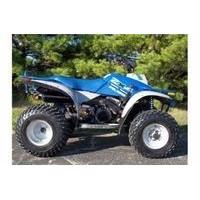 Polaris Trail Boss 250/300 4WD, les pneus disponibles