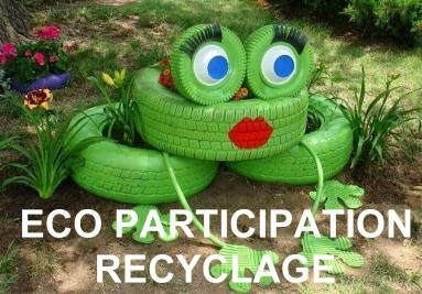 eco participation